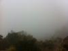 Grand Canyon im Nebel/Wolken/Regen
