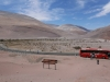 Auf dem Weg von Arica nach Iquique