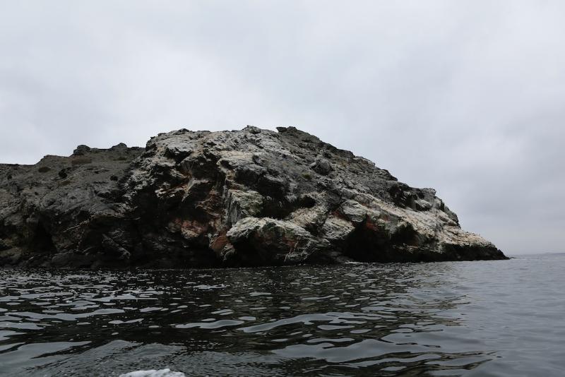 Ausflug zum Nationalreservat Punta Choros / Bootsfahrt zur Isla Damas